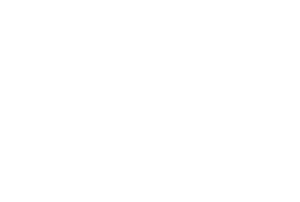 VC_LOGOS_Film_2020_WIT